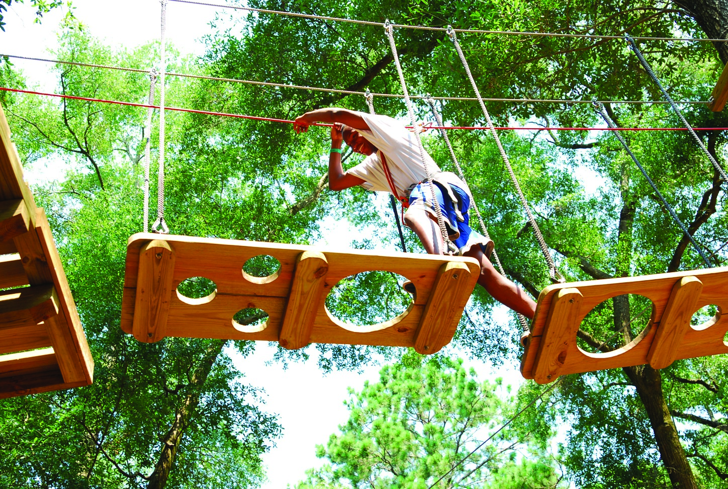 tallahassee museum zipline obstacle course