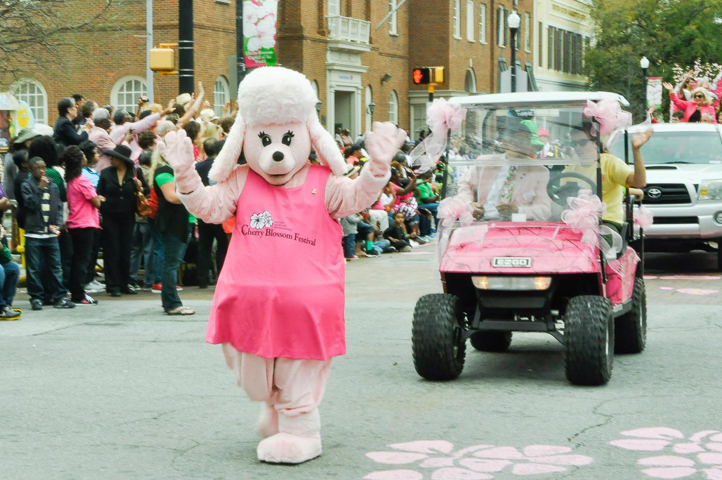 Cherry Blossom Festival, Parade, Macon Ga